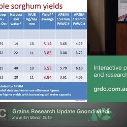 Grains Research Update